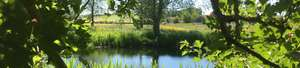 River Waveney Trust